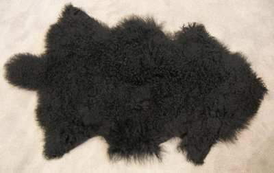 Tibetlam zwart