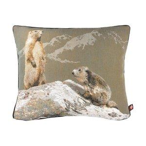 Art de Lys-3 marmot
